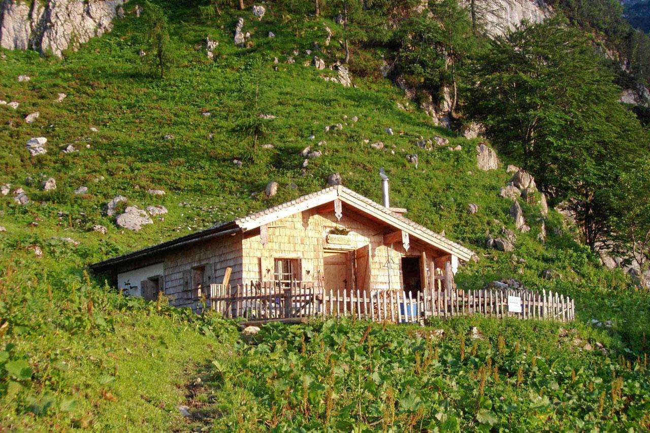 Hotel Traunstein in Abtenau - Almütte Wandalm