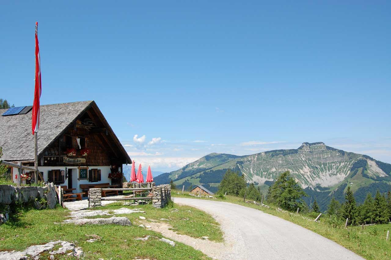 Abtenau Trattberg im Sommer